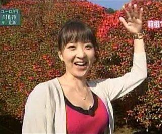 関口奈美キャスター胸チラエロお宝画像
