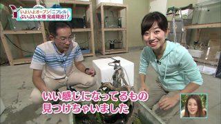 豊崎由里絵アナおっぱいの谷間胸チラリ放送事故エロお宝画像